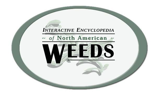 Interactive Encyclopedia of North American Weeds DVD